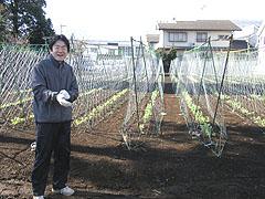「この畑から給食のお野菜が育つんです」と野村園長先生
